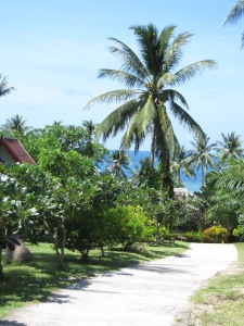 Palmių alėja