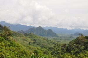 Khao Sok džiunglės