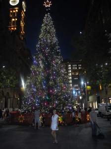 Sidnėjaus Kalėdų eglutė