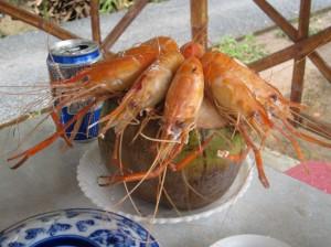 Kokose virtos krevetės